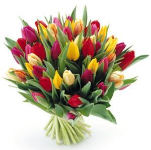 tulipany_bukiet